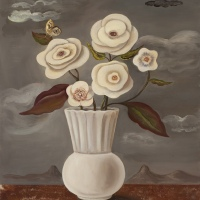 I love a gray day with white roses by Jane Smaldone