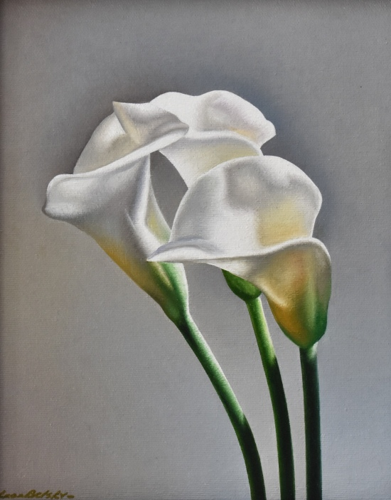 Calla Study by Leon Belsky