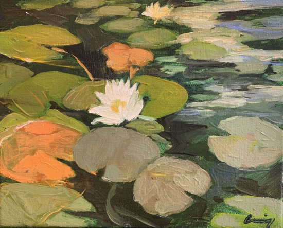Water Lilies by Philip Craig