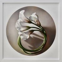 Spinning Calla Lilies #1 by Leon Belsky