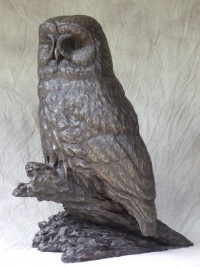 Phantom of the Forest, Great Grey Owl by Peter Sawatzky